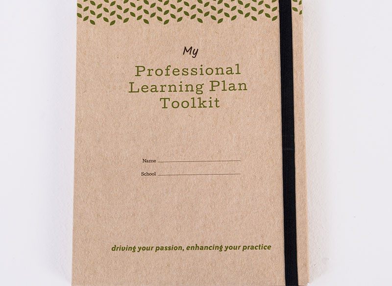 Various components of the Professional Learning Plan
