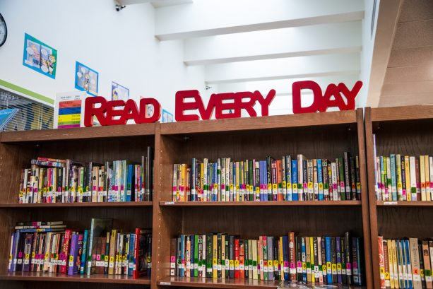 Fresh Ideas to Spark Interest in Your School Library